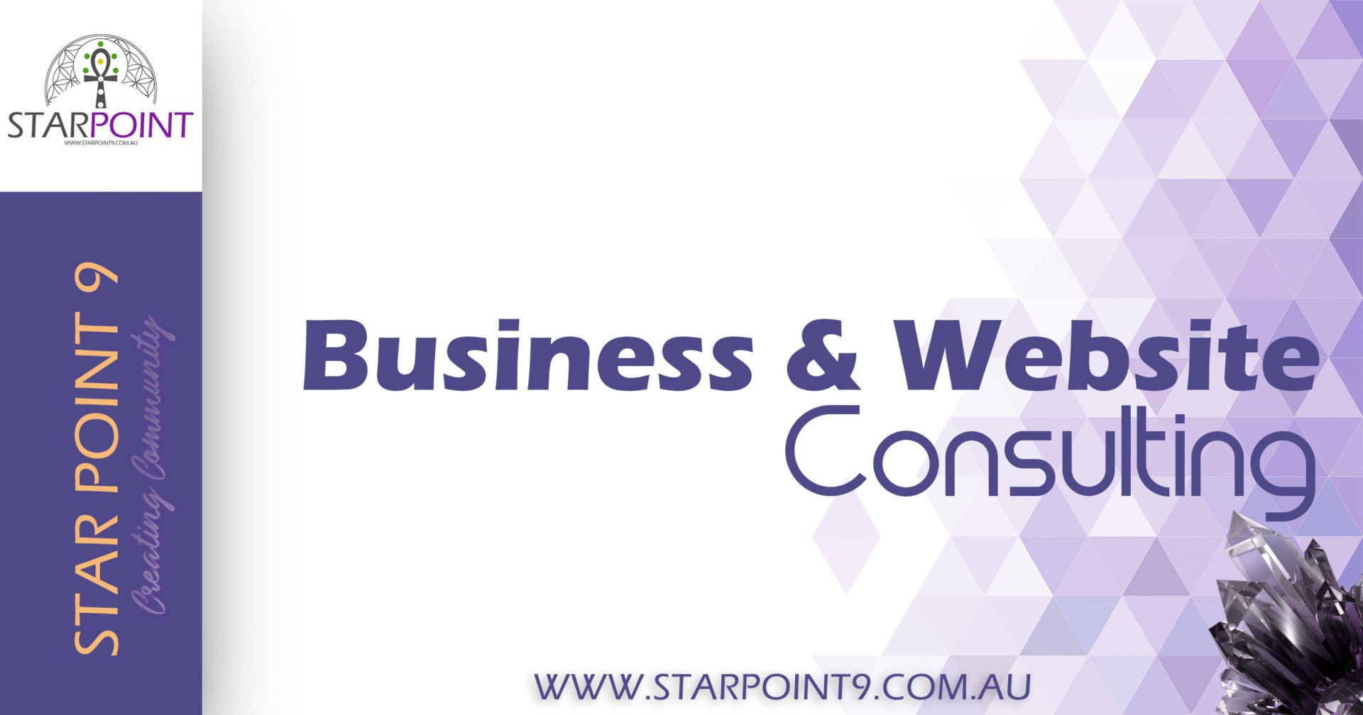 Business & Website Consulting with Steven North & Star Point 9